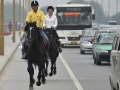 horseback-ride-to-work-2