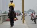 horseback-ride-to-work-3
