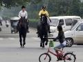 horseback-ride-to-work-5