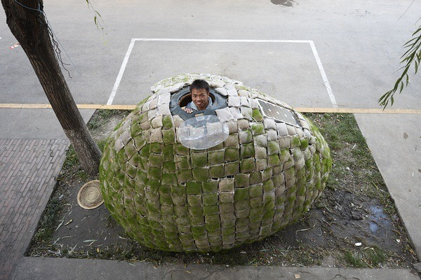 portable-egg-home-9