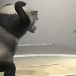 ninja-vs-panda