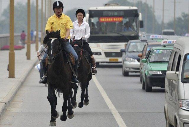horseback-ride-to-work-2